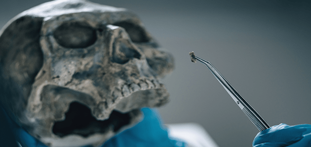 Forensic scientist collecting specimen from a skull